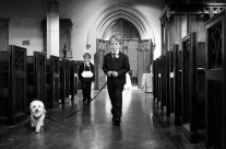 Puppy and Ring Bearers
